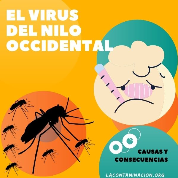 virus del Nilo Occidental en España